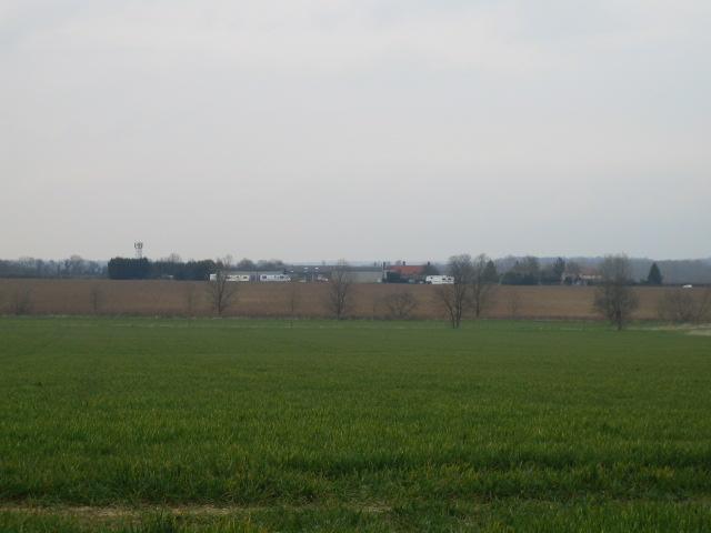 Farmland near Abbess Roding