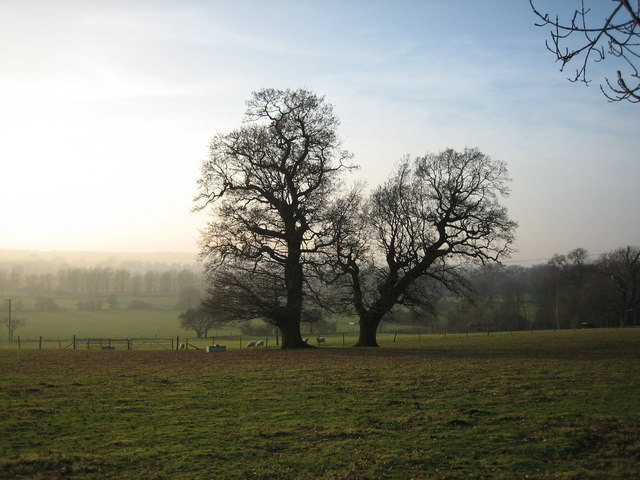 Twin Oaks above Stour Valley