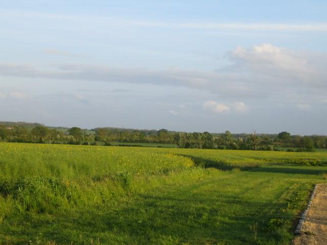 Farmland off West Street, Steeple Claydon