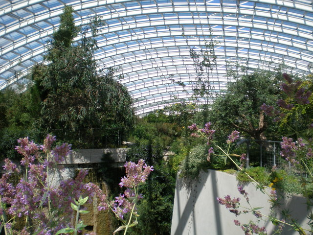 Inside the Great Glasshouse.