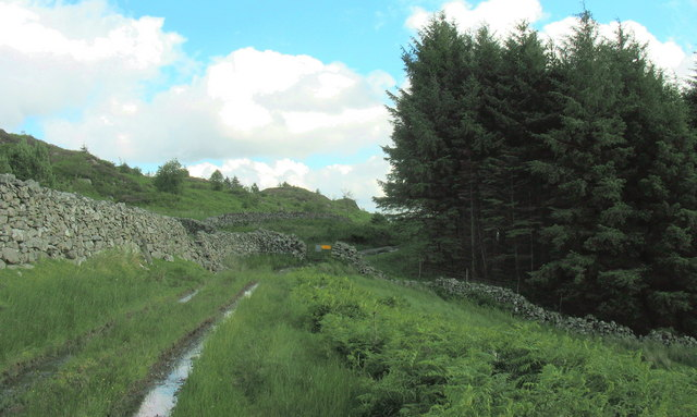 View South along the Roman road towards the forest entry gate