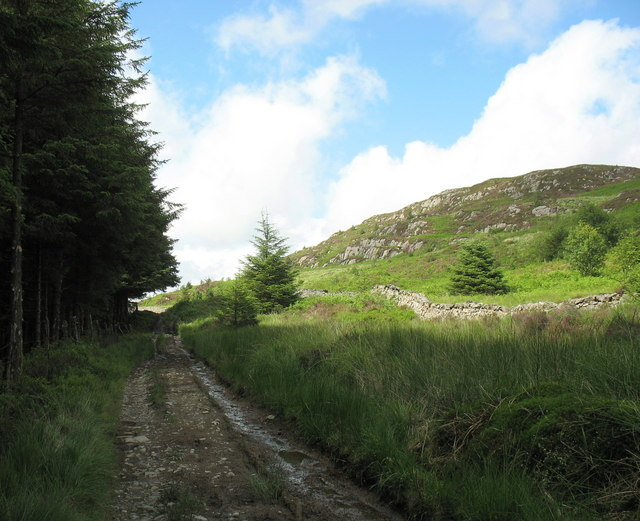 Approaching the northern limit of the Coed y Brenin forest