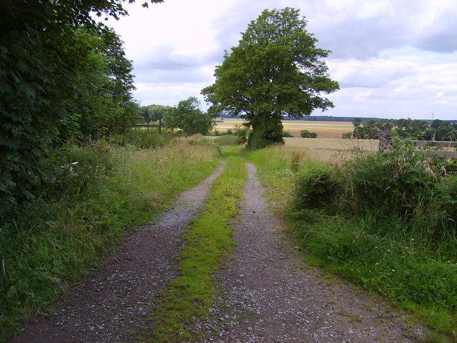 Common Lane