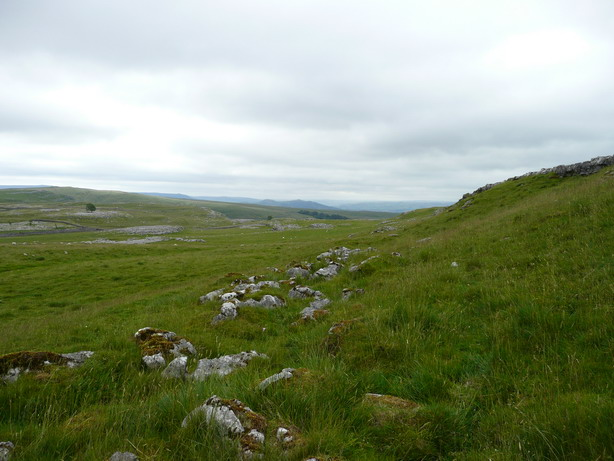 Hillside below limestone pavement
