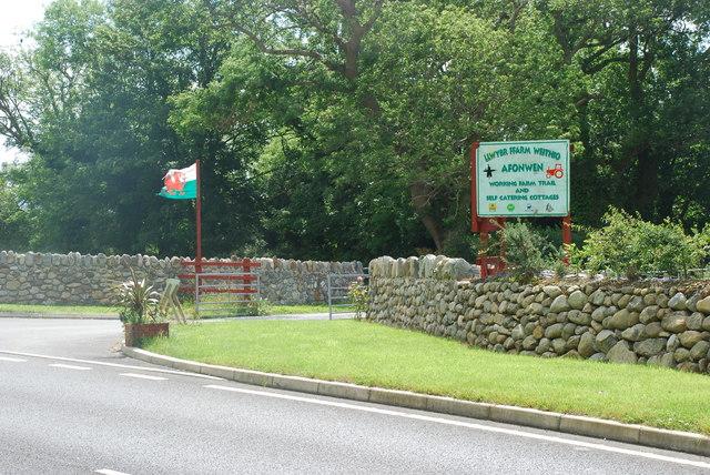 Fferm Afonwen Farm