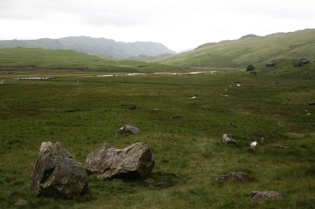 Great Moss, Upper Eskdale.
