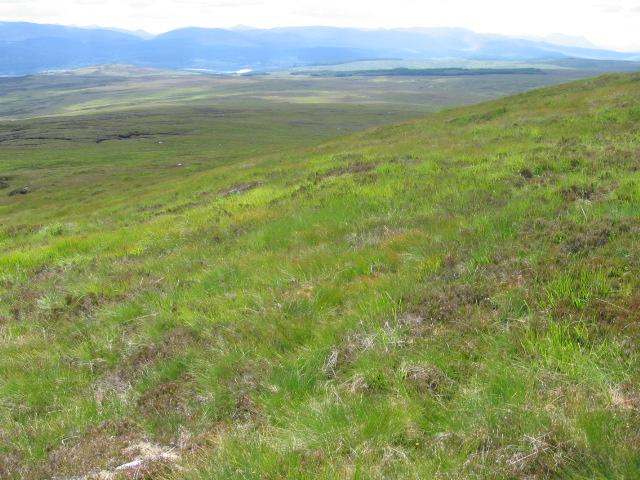Hillside of Creag a' Mhadaidh
