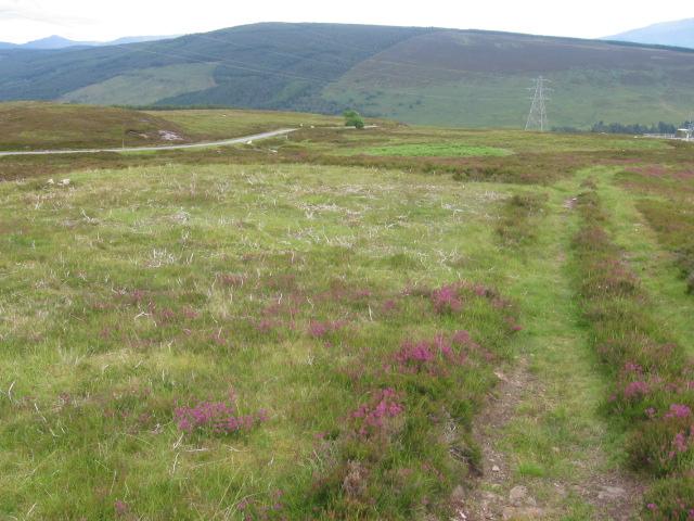 Dubh Lochan track