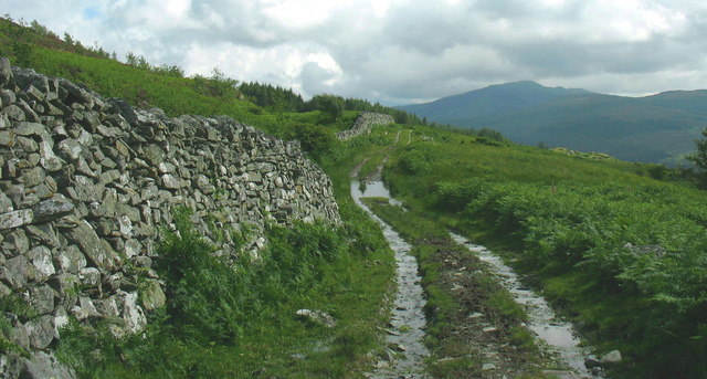 Waterlogged section of Sarn Helen