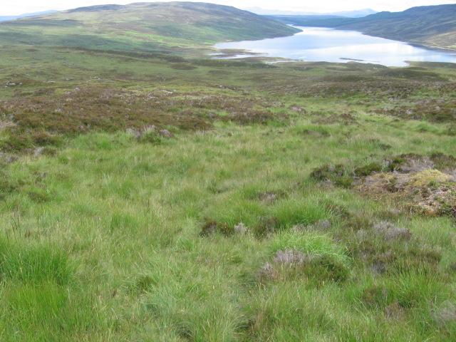 Above the head of Loch Errochty