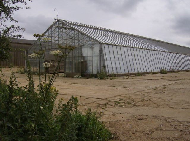 Glasshouses at Wolverton Farm