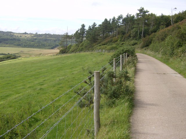 Descent from Chillerton Down