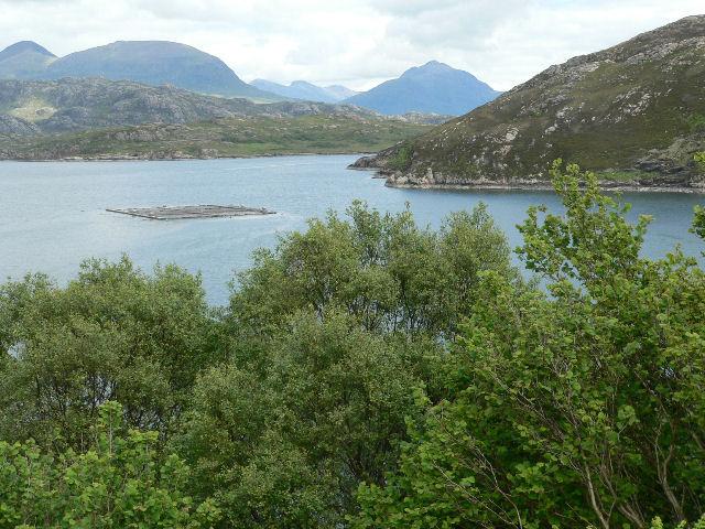 Salmon fishery in Loch a Chracaich
