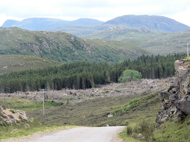 Recent forestry work at Arinacrinachd
