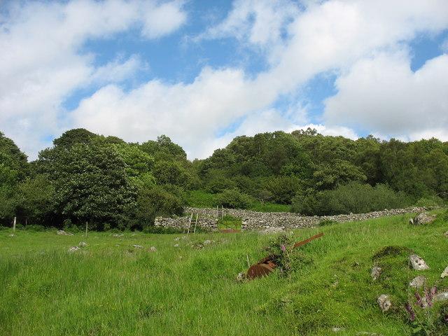Stiles on path at Tyddyn-du