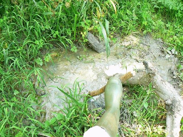 Wootton Bassett Mud Springs (5)