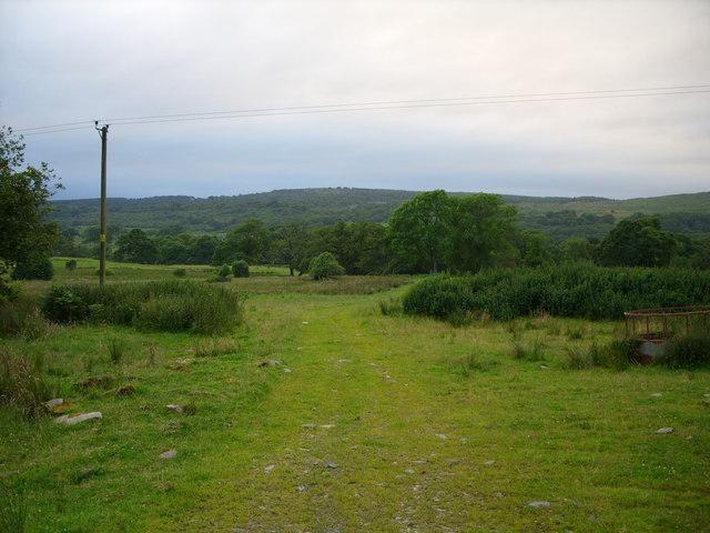 Glenhoise Woods