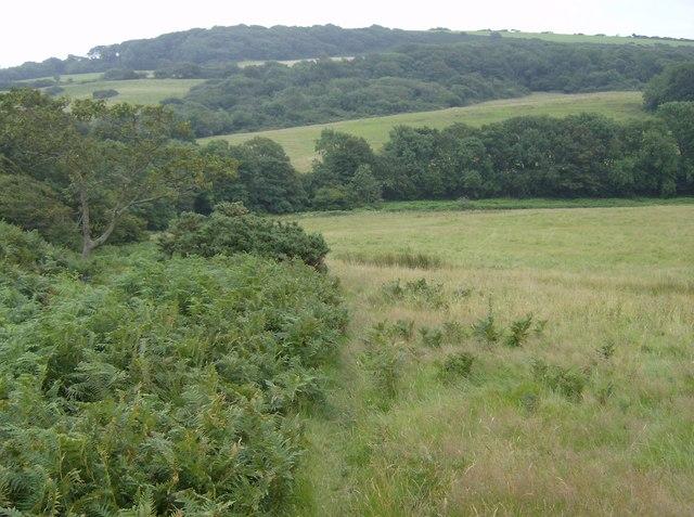 Near Wydcombe
