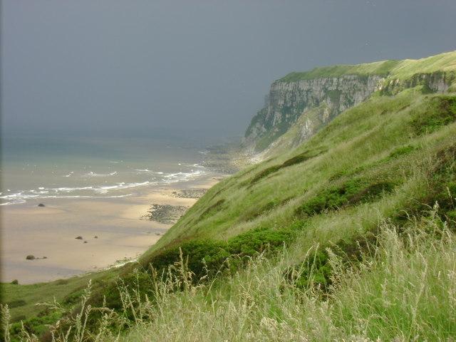 Speeton Sands and Buckton Cliffs