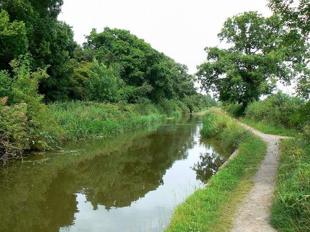 Wilts and Berks canal, Wootton Bassett (1)