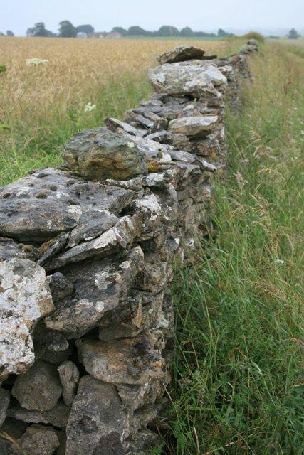 Limestone Dry Stone Wall, Near Riccal Heads