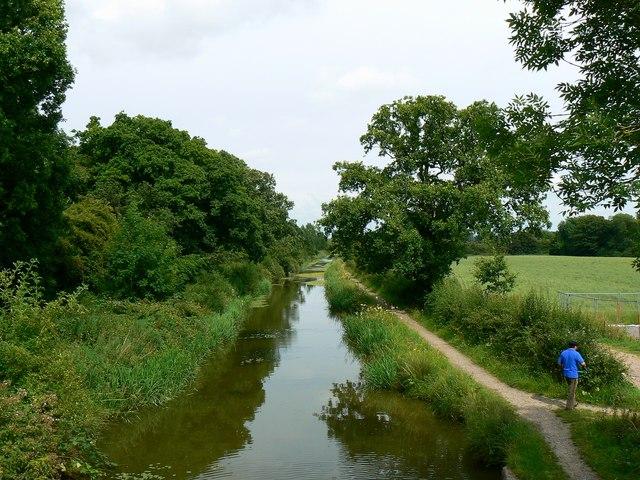 Wilts and Berks canal, Wootton Bassett (2)
