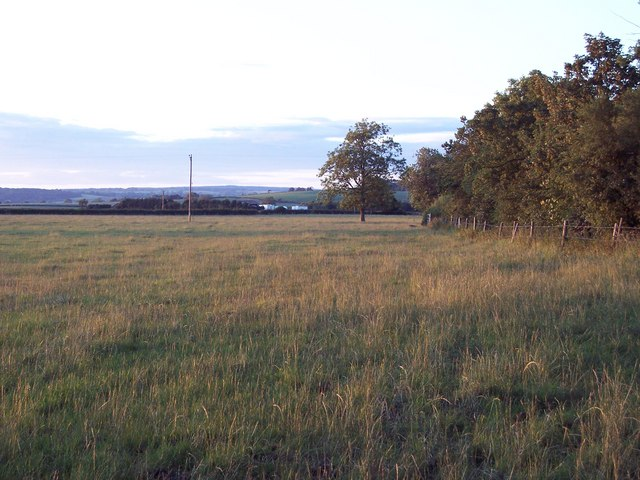 Field Boundary, Hobground