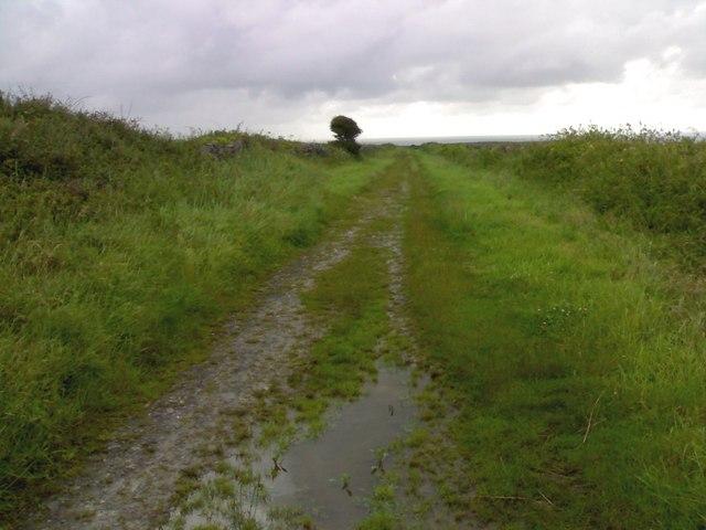 Bridleway to Overton