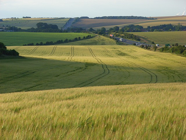 Farmland, East Ilsley