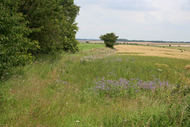 Farmland off High Dyke