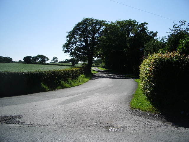 The road to Moss Side Farm