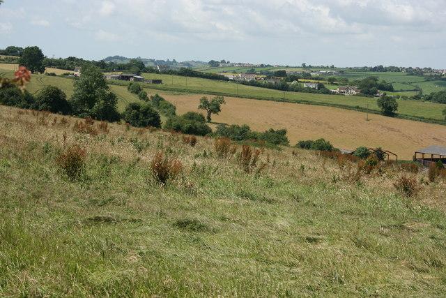 2007 : Farmland near Wellow