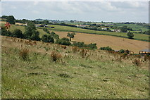 ST7258 : 2007 : Farmland near Wellow by Maurice Pullin