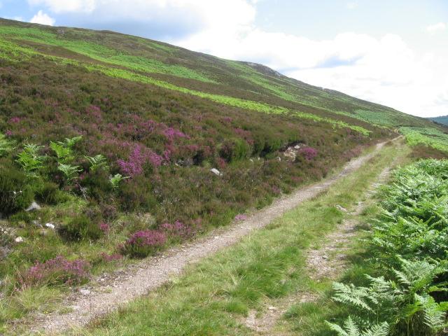 Track on north bank of Loch Errochty