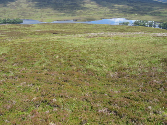 Sron Chon hillside towards Loch Con