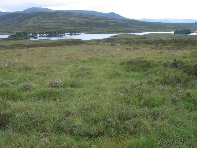 Leathad Easain Uidhir towards Loch Con