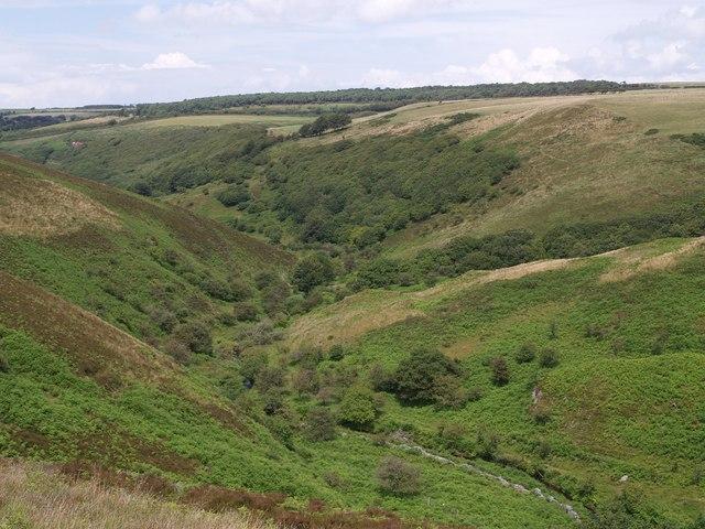 Weir Water valley