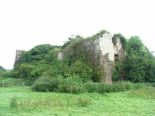 Liscartan Castle