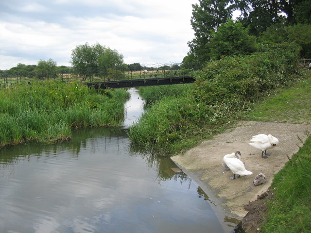 Side channel of the River Avon