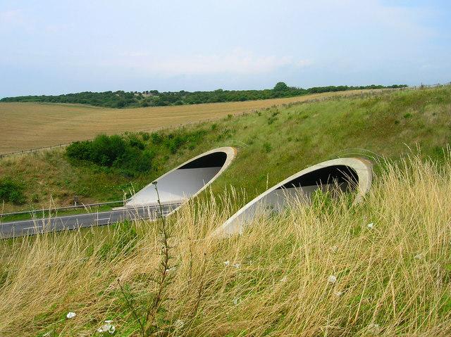 Southwick Hill Tunnel