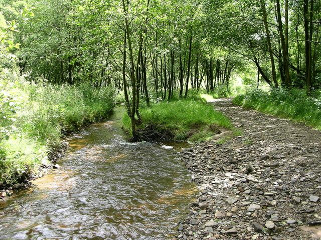 Footpath beside Red Brook