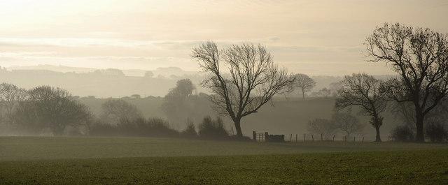 Ponker Farm Fields