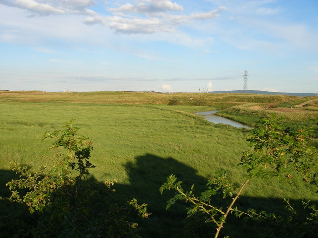 Greatham Creek meanders through Cowpen Marsh