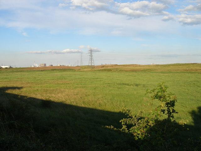 Cowpen Marsh