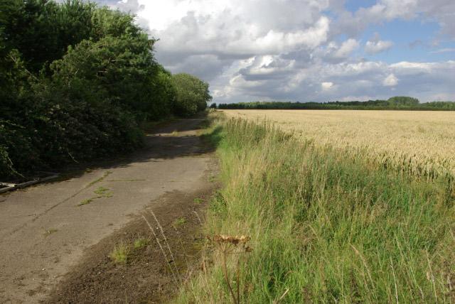 Farmland near Grafton Underwood