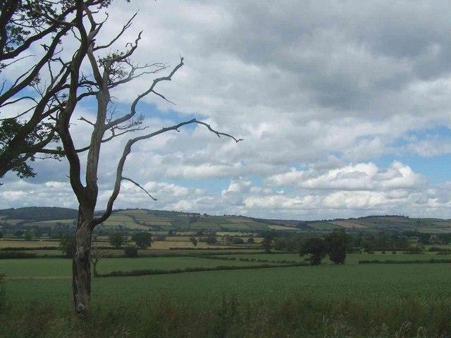 Near Tugford