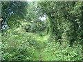 TL0663 : Footpath by Les Harvey