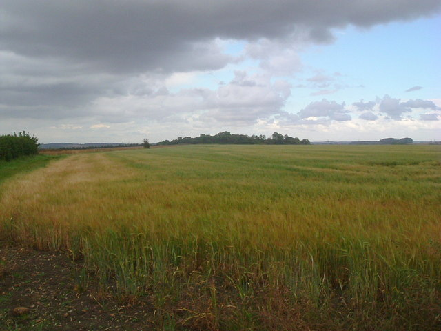 Looking northeast near Little Staughton