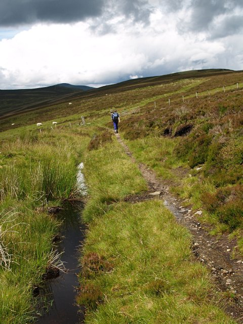 Track to The High Tree from Bad Buidhe