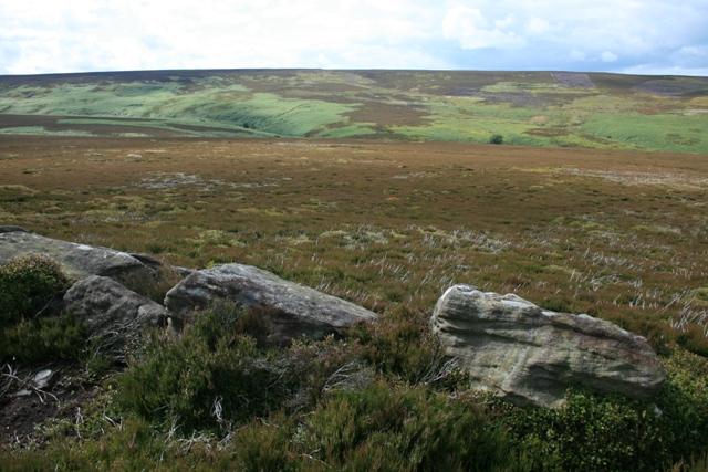 Small Rock, Colsterdale Moor